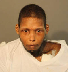 Andre Ford / Photo from Cook County Sheriff's office