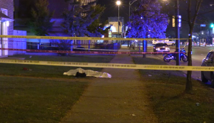 Chicago Police investigate a fatal stabbing Sunday night in the 8300 block of South Cottage Grove. | Network Video Productions
